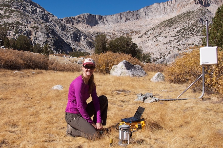 Chelsea Arnold (Phd 2014) at one of her field sites.